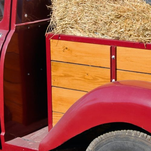 Textrol used on the wood panelling of a pick up truck