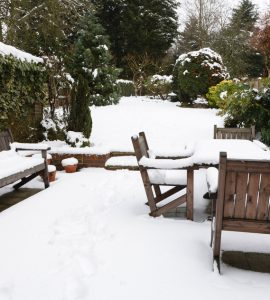 prepare your garden for Winter