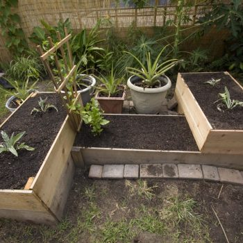 Raised garden bed on 3 different levels