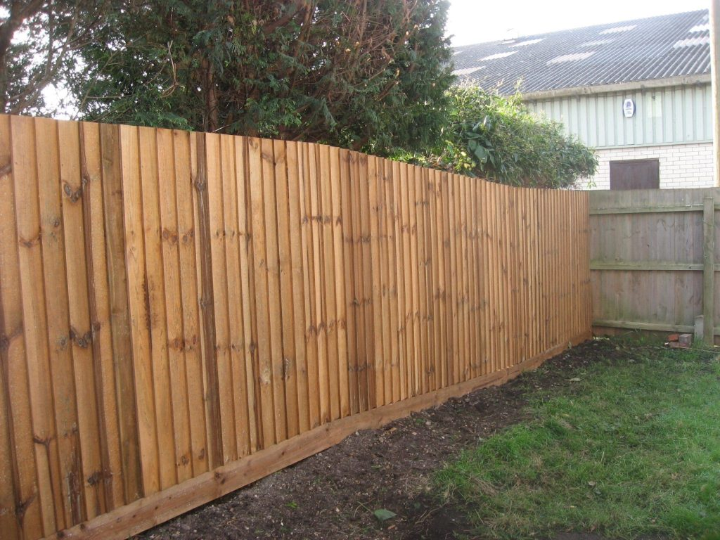 A closeboard fence in a yard