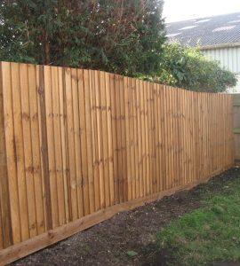A closeboard fence in a yard