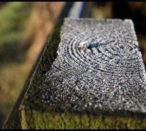 Frozen wooden post