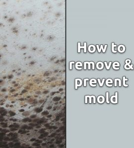 How to remove and prevent mould