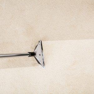 Carpet being washed